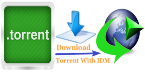 Tricks to Download Torrent Files with IDM – Faster Torrent to IDM