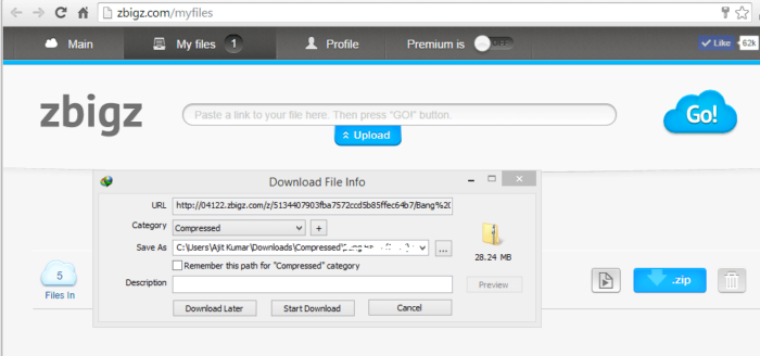 Torrent with IDM Download